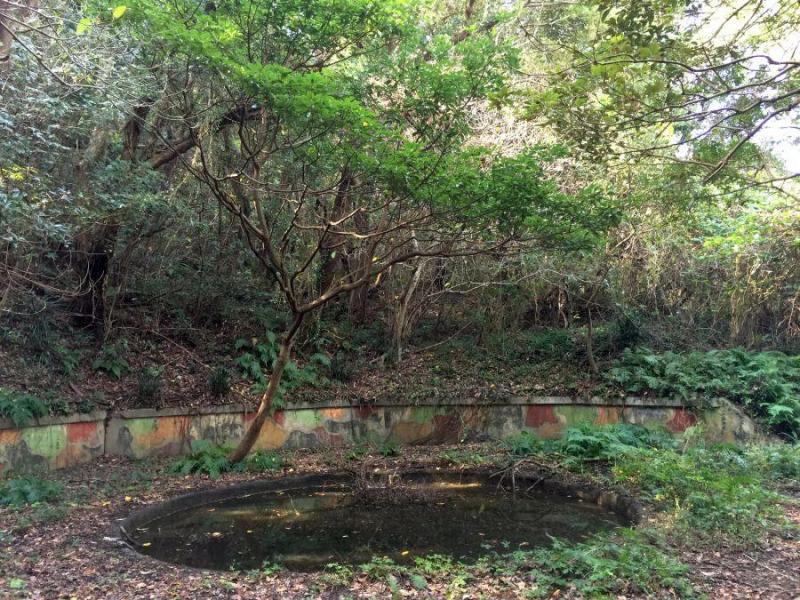 佐田岬第二砲台8