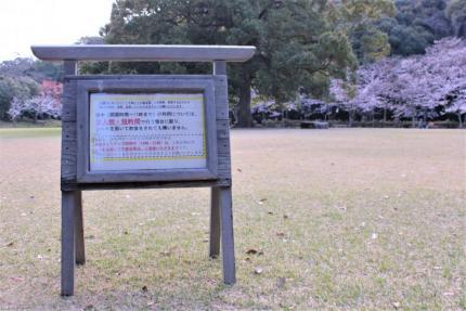 kagawa_ritsuring_20210330_7.JPG