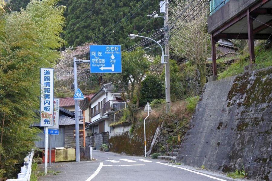kyobashira003.jpg
