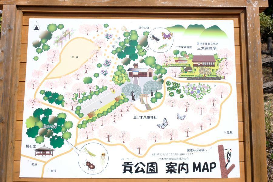 mitsuki014.JPG