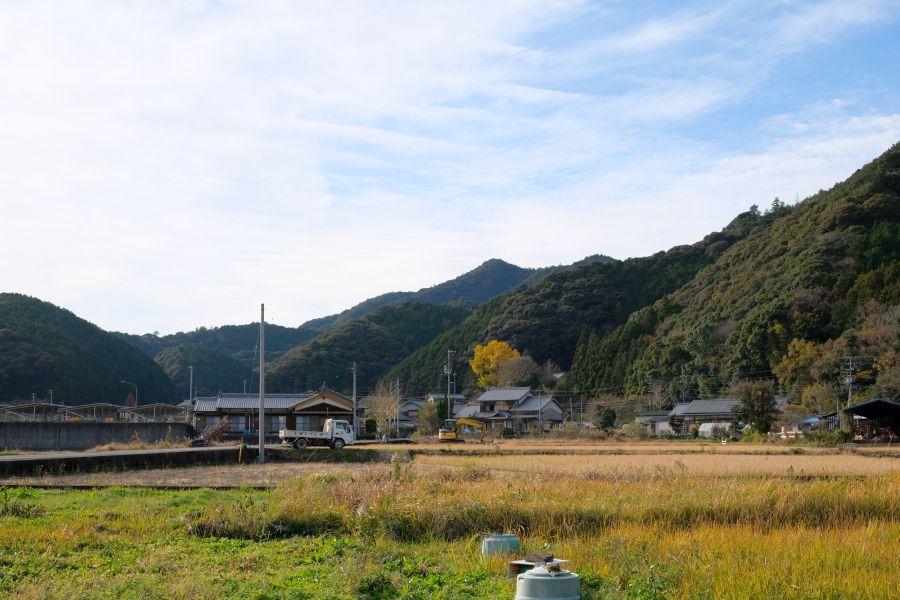 senzoji19009.JPG