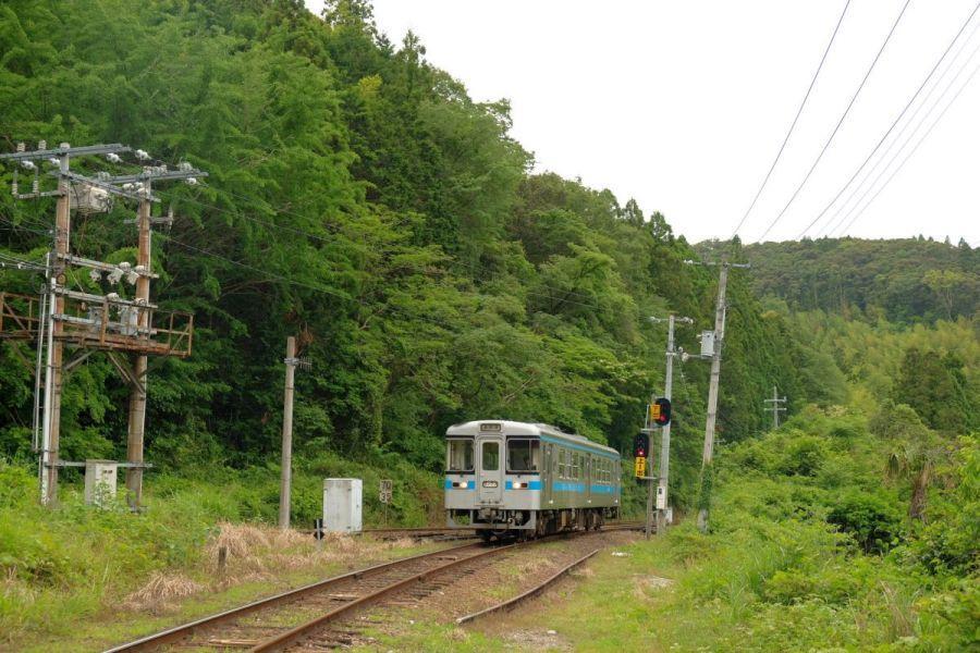 shingai003.JPG