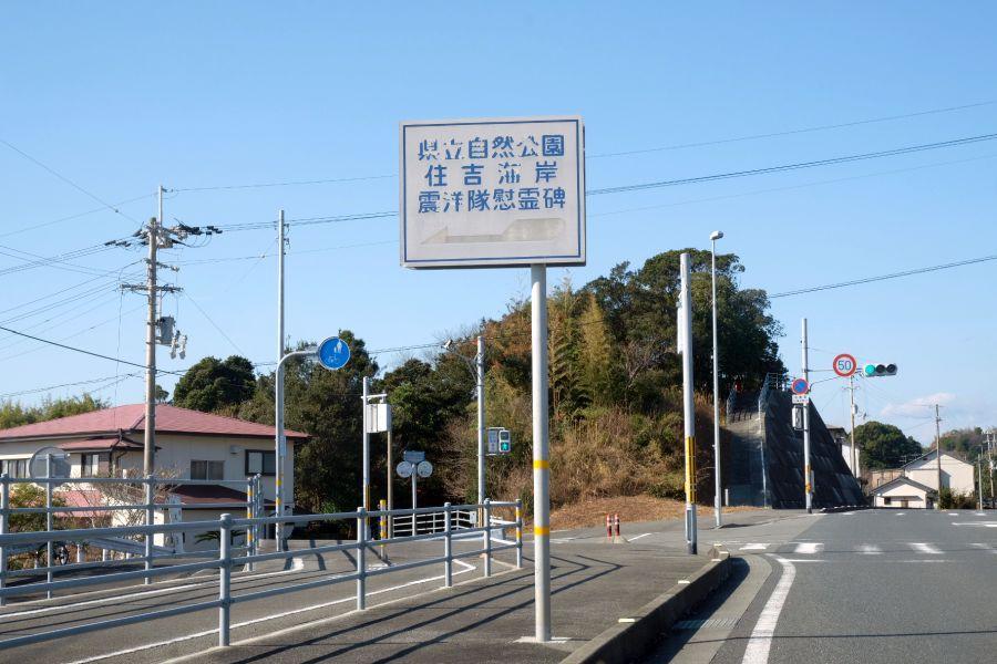 shinyotai002.JPG