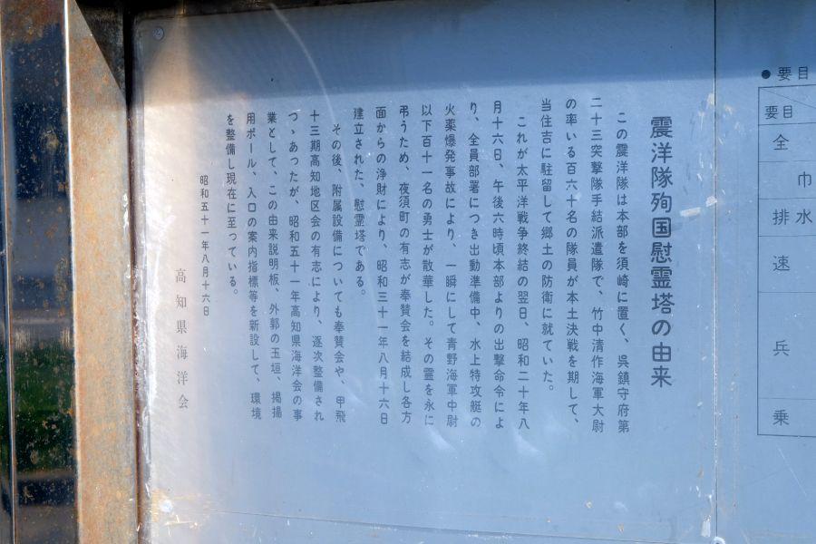 shinyotai007.JPG