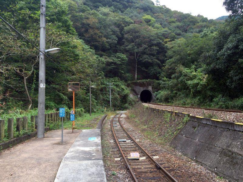 tsubojiri028.JPG