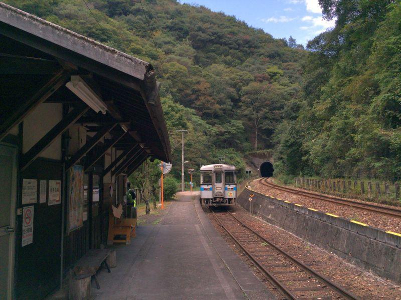 tsubojiri032.JPG