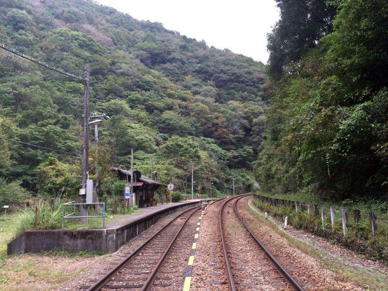 tsubojiri033.JPG
