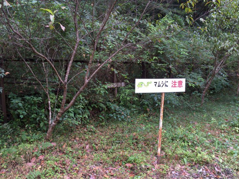 tsubojiri034.JPG