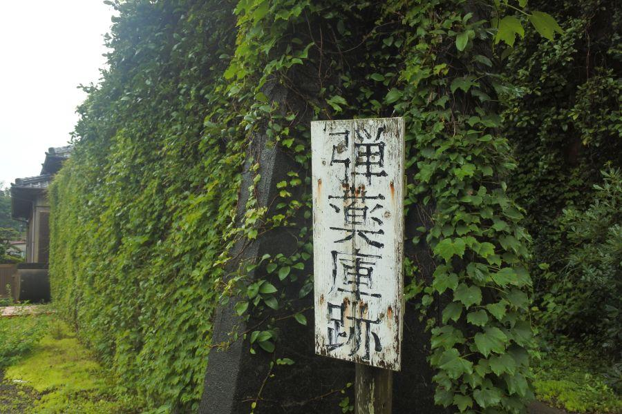 ususuki002.JPG