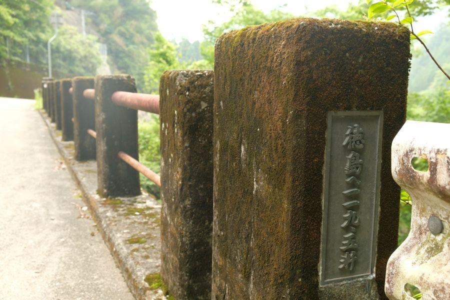 yotsashi005.JPG